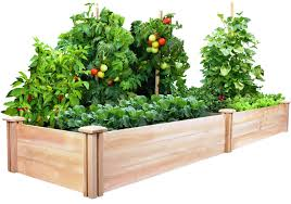 raised vegetable garden gardening ideas