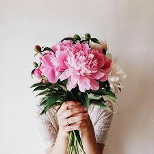 strangers flowers giving flowers