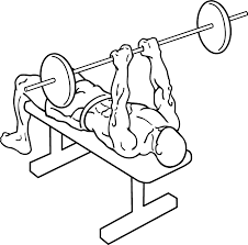 file narrow grip bench press 1 png wikimedia commons
