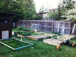 farm backyard backyard farming on an acre ideas walsall home