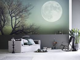 captivating wall murals that transform your home lately