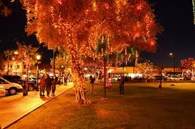 top 10 christmas lights shows in phoenix 2012