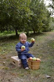 Skinny Bones Pumpkin Patch Blair Nebraska by 207 Best Baby Boy Images On Pinterest Children Photography And