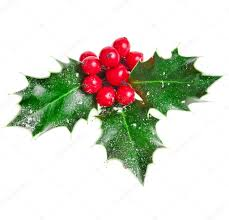 christmas mistletoe christmas mistletoe decoration stock photo madllen 60353173