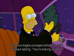 13 simpsons quotes that sum up the situation in ferguson perfectly