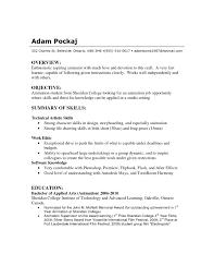 Basic Resume Skills Resume Technical Summary Free Resume Example And Writing Download