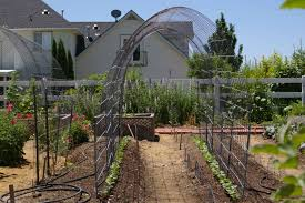 diy trellis arbor how to build a grape trellis arbor u2014 farmhouse design and