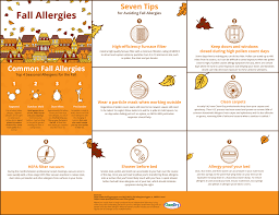 Fall Outdoor Pillows by Common Fall Allergies And Seven Tips To Avoiding Them Carpet