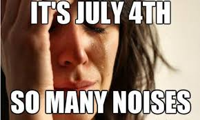 Funny 4th Of July Memes - 7 funny fourth of july memes because america can be pretty