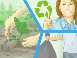 the 7 best ways to help save the environment wikihow