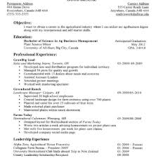 resume examples for jobs with experience resume example and free