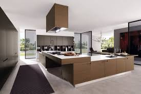 amazing wooden cabinet idea with contemporary style for kitchen