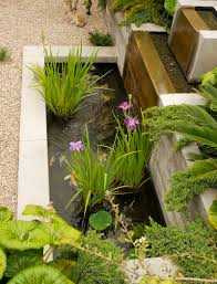Backyard Fish Ponds by Build A Backyard Fish Pond Without Going Belly Up