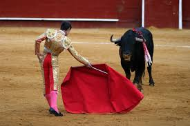 why do bulls charge when they see red