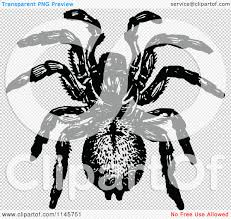 spider transparent background clipart of a retro vintage black and white trap door spider