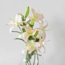 Casablanca Lily Imitation Pale Pink Casablanca Lily Stem By Amaranthine Blooms
