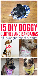 Cute Dog Products by Top 25 Best Cute Dog Clothes Ideas On Pinterest Pet Clothes