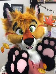 halloween fox lucky coyote on twitter