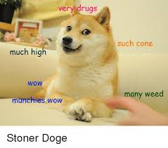 Much Doge Meme - very drugs much high wow munchies wow such cone many weed stoner