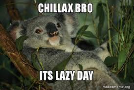 Lazy Day Meme - chillax bro its lazy day laid back koala make a meme