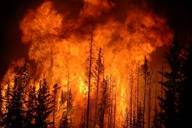 Wildfires In Bc July 2012 by Fish Fry Forest Fires And Stream Fish The Fisheries Blog