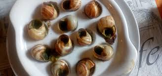 escargot cuisine escargot everything about snail farming and dining