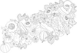 free coloring page u2013 thefrancofly