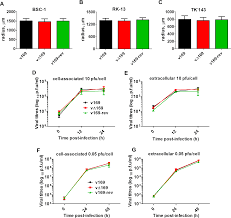 inhibition of translation initiation by protein 169 a vaccinia