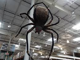 scare the trick or treaters on halloween with this giant spider