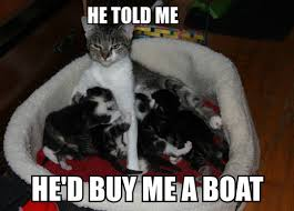 Cat Buy A Boat Meme - forever resentful cat mom the meta picture