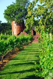 Virginia Wine Trail Map by 122 Best Wineries Images On Pinterest Wineries Washington Metro