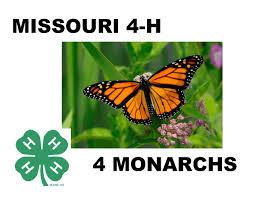 monarchs and pollinators overview
