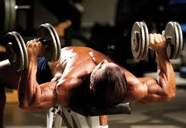 Bench Pressing With Dumbbells Dumbbell Bench Presses Tips U0026 Techniques For Bodybuilders