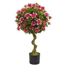 Outdoor Topiary Trees Wholesale - topiaries the home depot