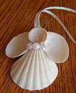 seashell ornament decor nautical