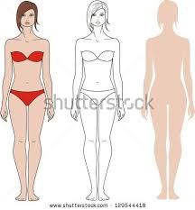 vector illustrations templates human figures silhouettes stock