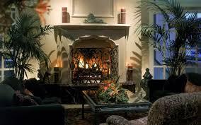 fireplace grate heater heat exchanger blower fireplace design