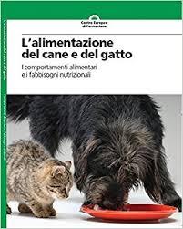 alimentazione casalinga gatto it l alimentazione e gatto autori vari libri