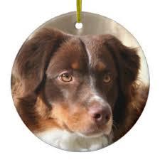 australian shepherd holiday decorations u0026 christmas décor zazzle