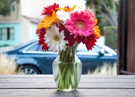 Decorate Flower Vase Free Photo Flower Vase Vase Flowers Free Image On Pixabay