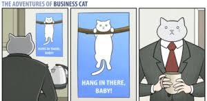 Business Cat Memes - business cat meme funny selection meme of office cat and cat with tie