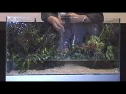 Takashi Amano Aquascaping Techniques Amano Aquascapes In 2 Minutes Youtube