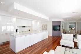 Modern Kitchen Designs Sydney Modern Kitchens Characteristics Art Of Kitchens