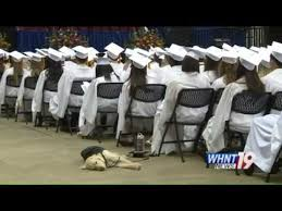 dog graduation cap and gown student s service dog attends graduation in cap and gown