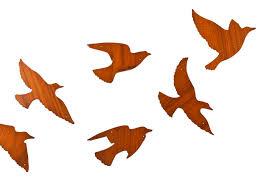 flock of birds wood decals colleen eric ahalife