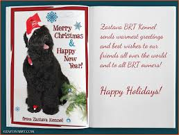 black russian terrier zastava kennel news
