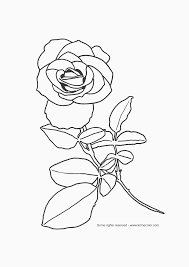 flower page printable coloring sheets free printable flower
