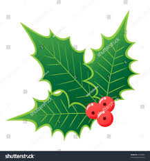 christmas holly three leaves red berries stock vector 32738500