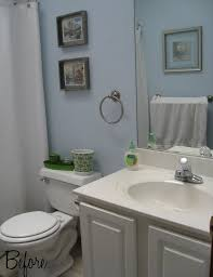 Small Bathroom Diy Ideas Small Bathroom Makeovers Pictures In Adorable Small