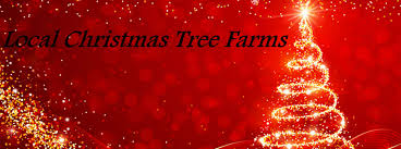 vermont new years local christmas tree farms and tree lots near hartford vt